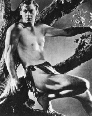 JW - Tarzan